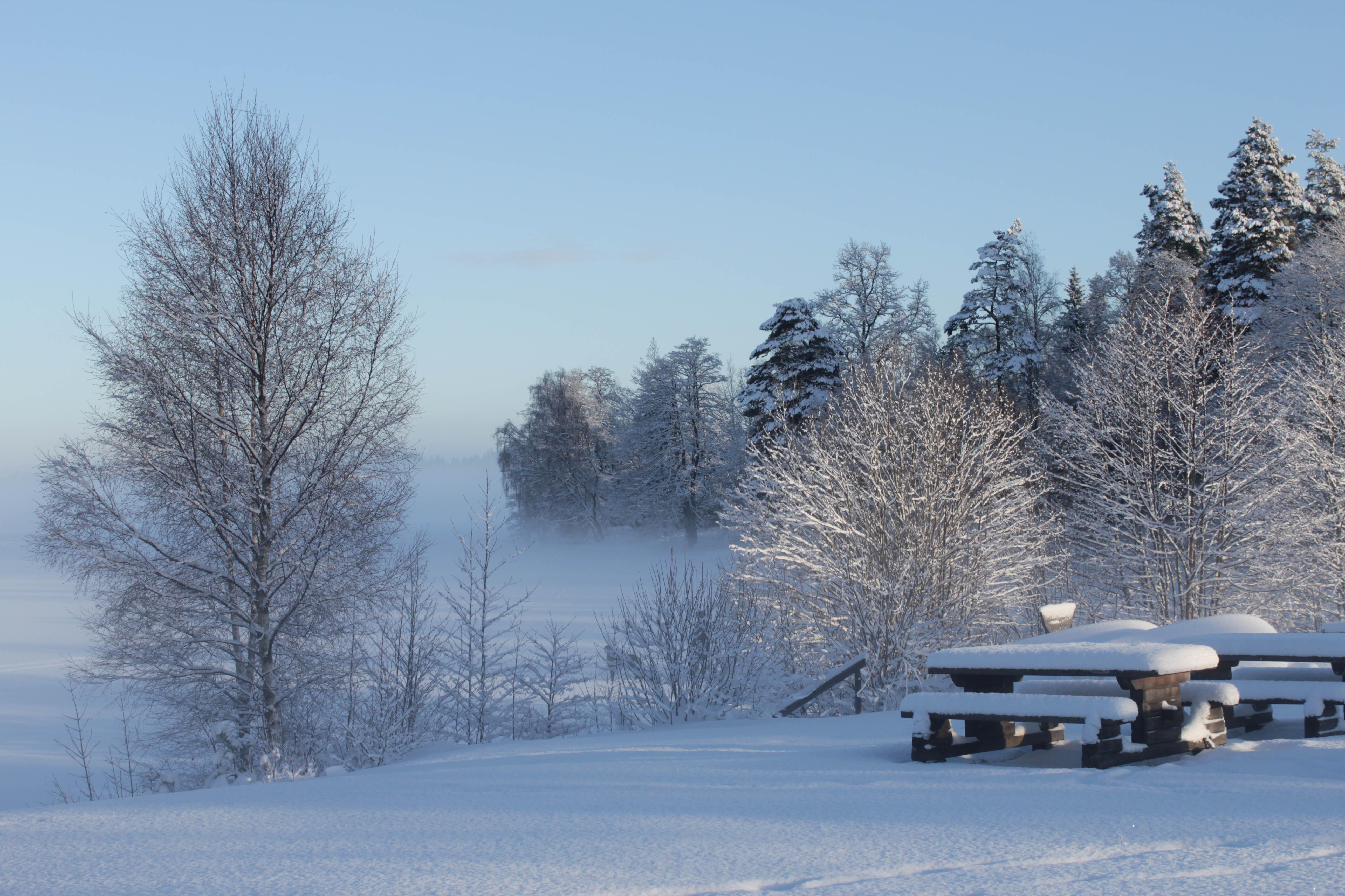 Dimma över Storesjön